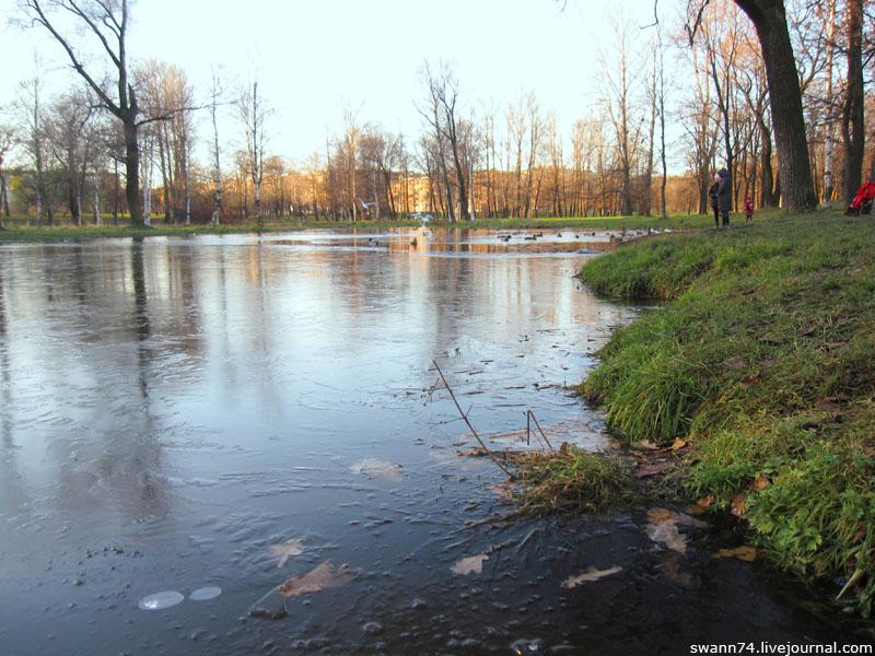 Парк Куракина Дача, Петербург, ноябрь 2012