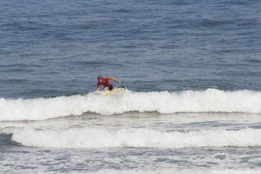 На острове Тенерифе, октябрь 2011 года.
