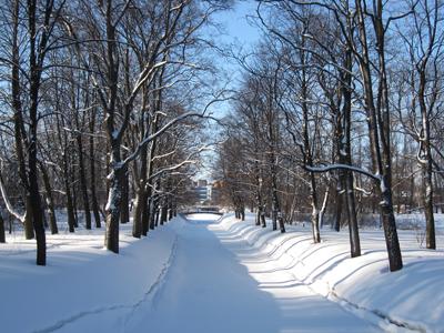 Екатерингофский парк, Подъездной канал, февраль.