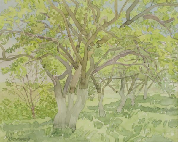 Юрий Ткачев. Под яблонями, 2010