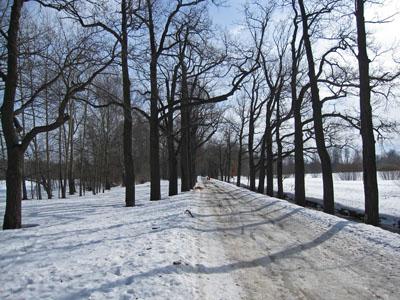 Отдельный парк, Царское село.