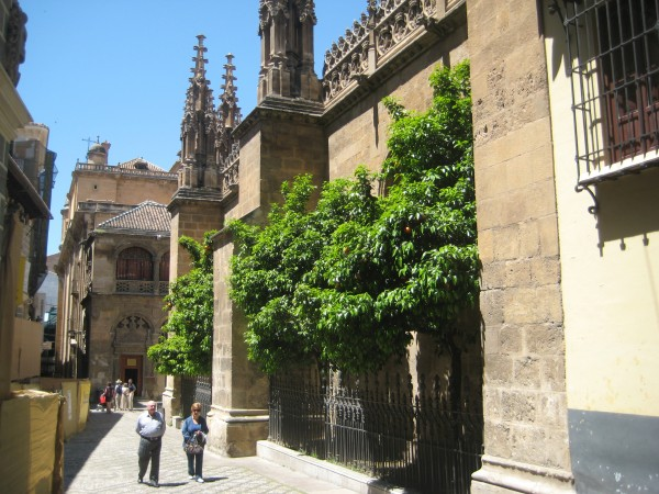 Granada (163)