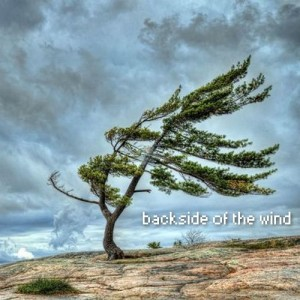 backside of the wind 11