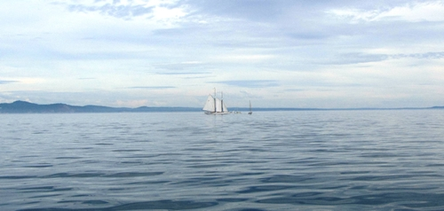Beautiful schooner 'Adventuress' from PT 28Aug13