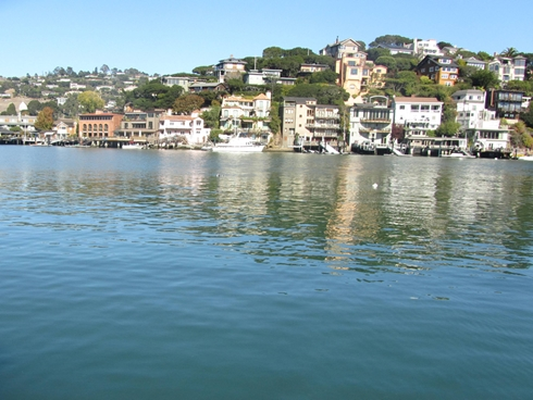 m_IMG_4102 View of Tiburon from sunny SFYC dock in Belvedere Cove