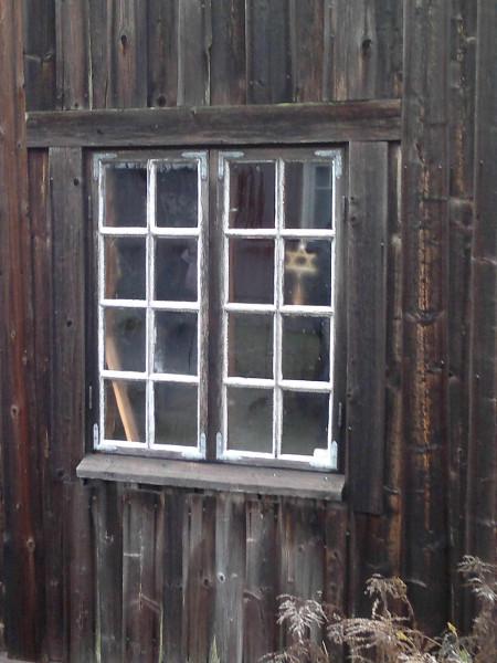 ЗОГ в окне1