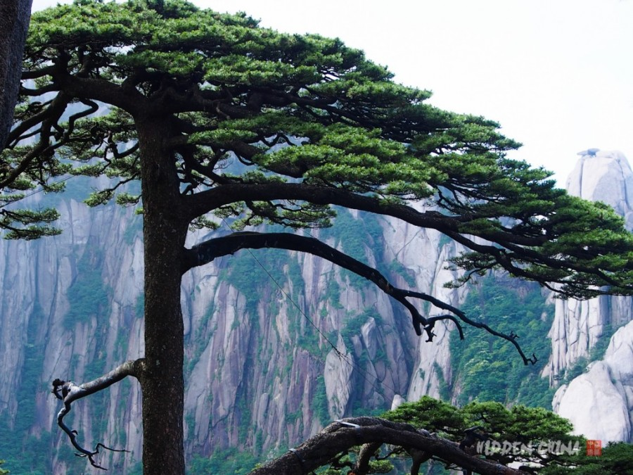 huangshan-hidden-china-11-1024x768
