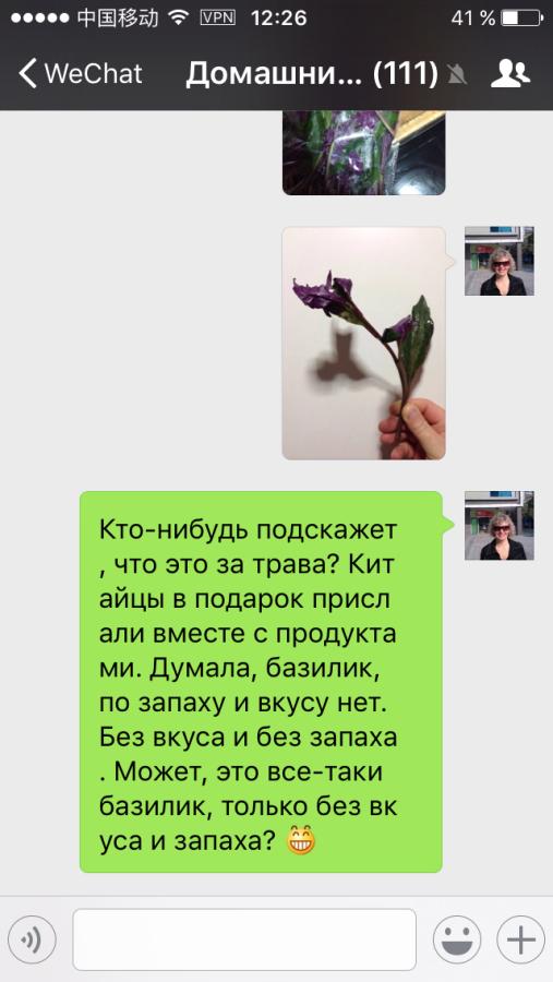 IMG_8342