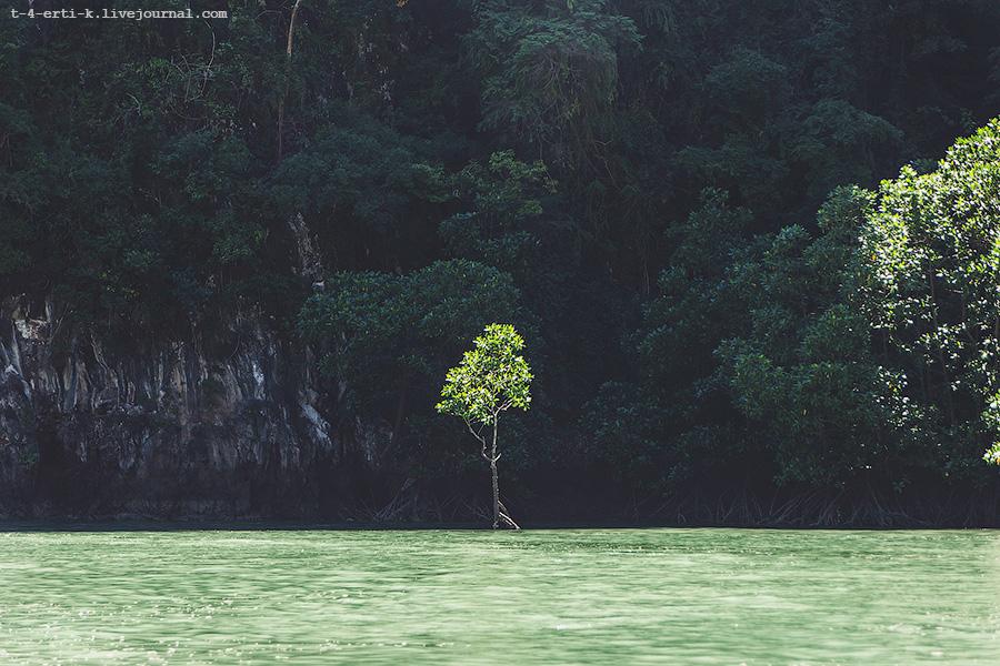 Krabi Islands (14).jpg