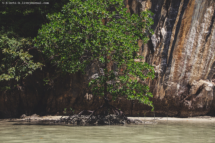Krabi Islands (20).jpg