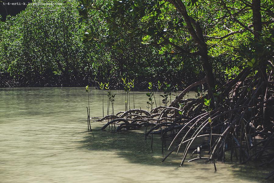 Krabi Islands (26).jpg