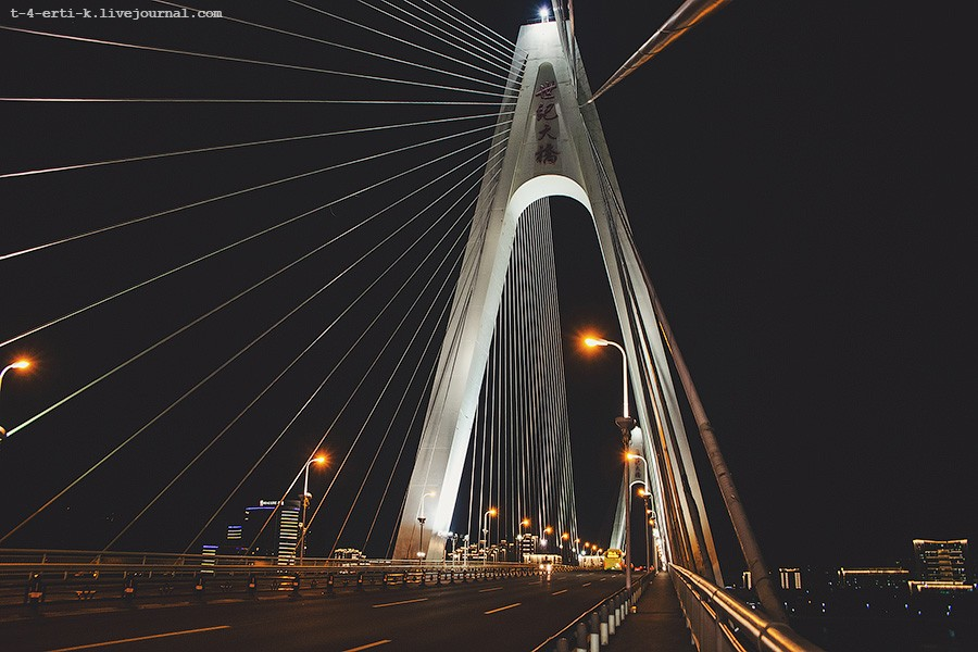 Haikou Century Bridge (6).jpg