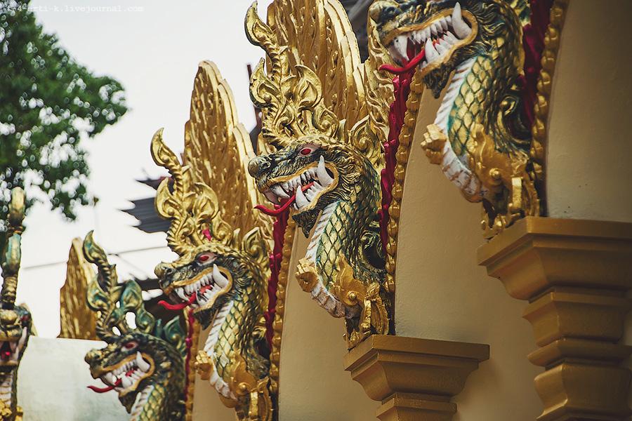 Krabi_tiger temple (1).jpg