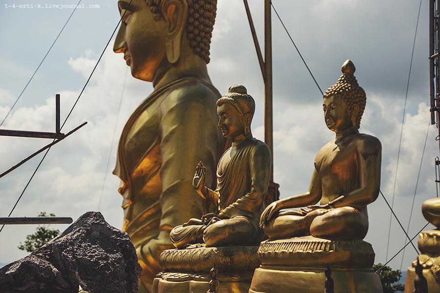 Krabi_tiger temple (12).jpg