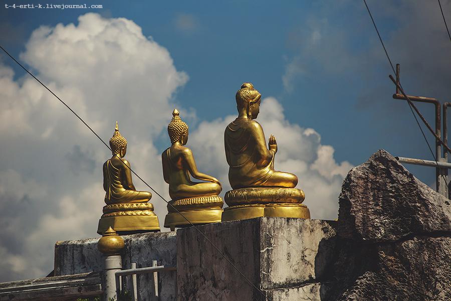 Krabi_tiger temple (16).jpg