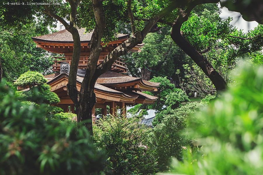 Hong Kong_Garden&Monastery (23).jpg