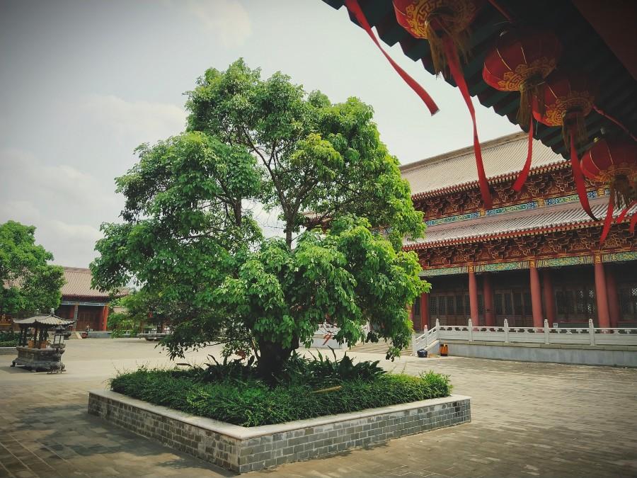 Yongqing Temple (11).jpg