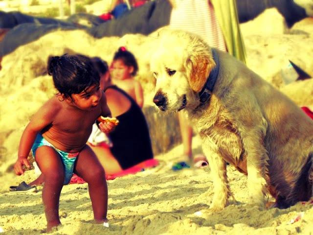 мальчик и собака