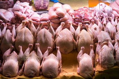 Магазинная курица в России опасна для жизни