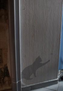 Тень кота