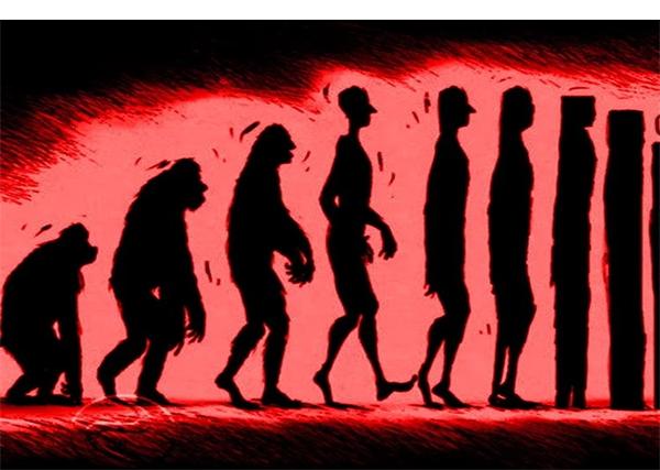 evolyuciya1.png