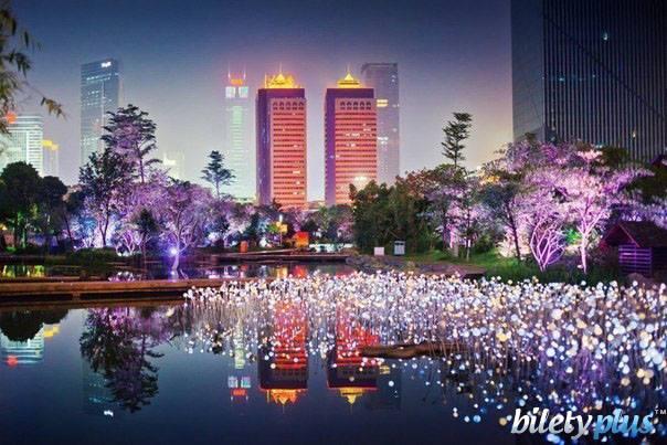 5 a Вечерний Гуанчжоу, Китай