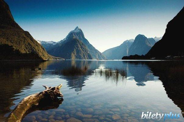 14 a Новая Зеландия