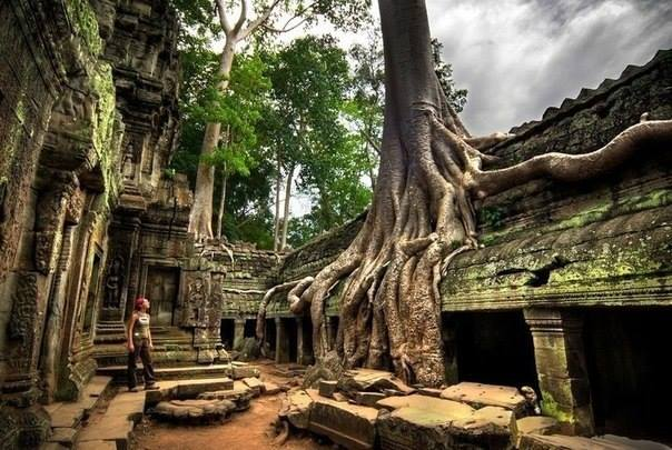 11 Ангкор-Ват, Камбоджа