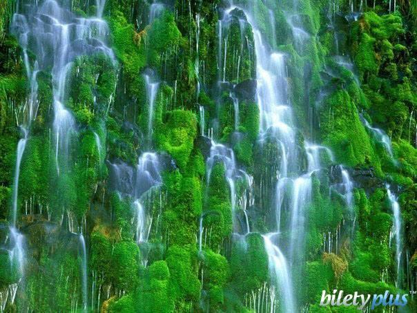 Мосбрай (Mossbrae) - уникальный водопад. Вода льется каскадом вниз по мшистым стенам каньона в Реку Сакраменто (самая длинная река Калифорнии).