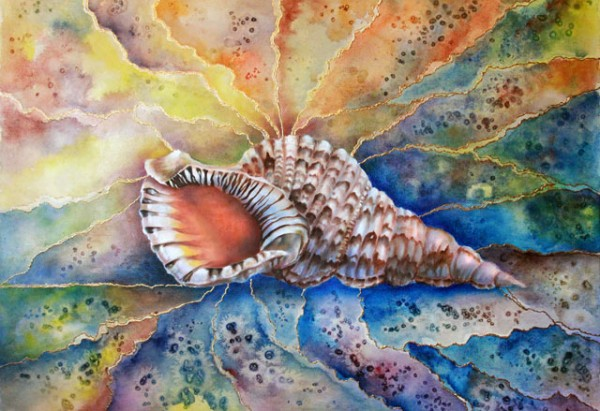 shell-dreams.jpg