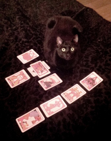 Aleister Tarot Cards 1