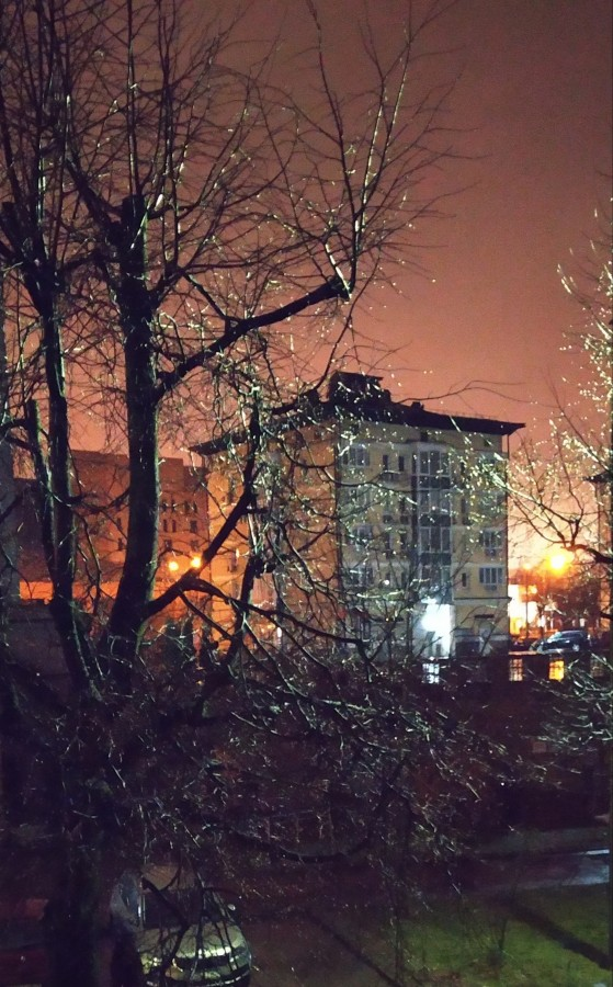 """А в саму Новогоднюю ночь и вовсе шел проливной дождь. Фотографию из открытого окошка так и назвала """"Новогодний дождь"""". Что он нам принесет этот 21-ый в этом двадцать первом столетии?"""