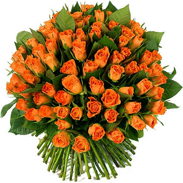 102154439_beautifulbouquets19
