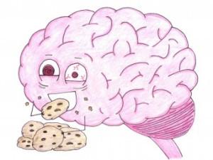 brainoncookies_340x255