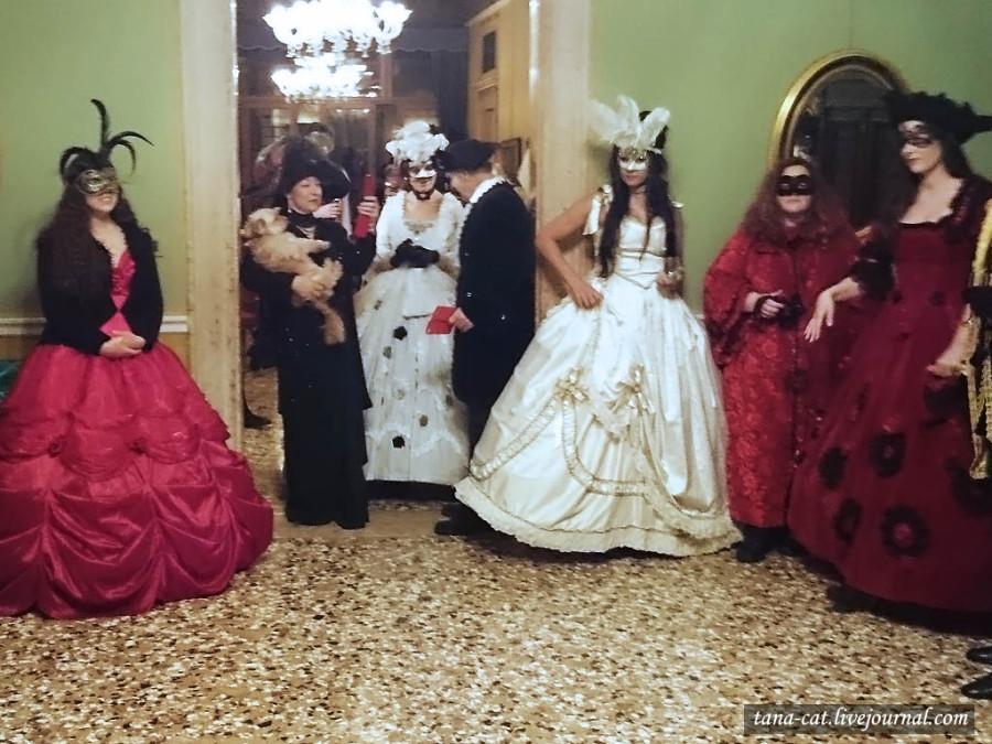 На этом балу допускаются и элегантные платья, и даже.. дамы с собачками