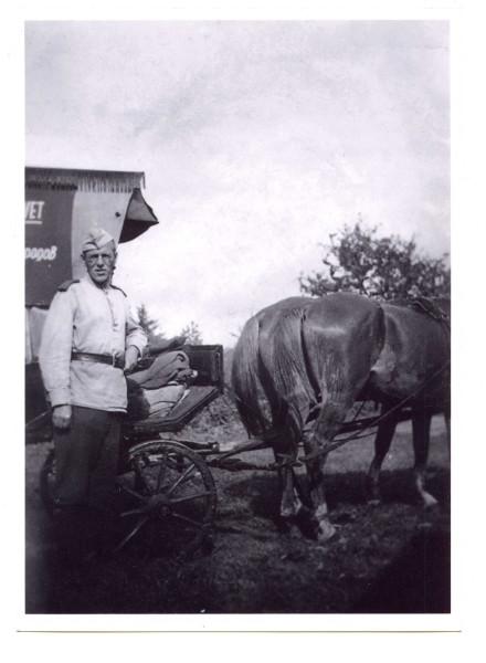 с лошадью609