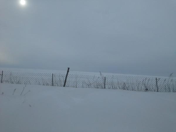 вид на поле с нашего участка