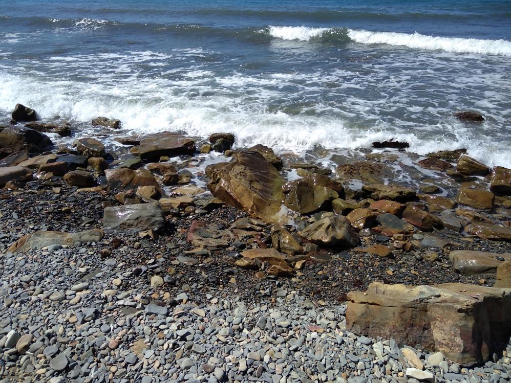 или линейный дикий пляж в анапе фото сочувствую такой
