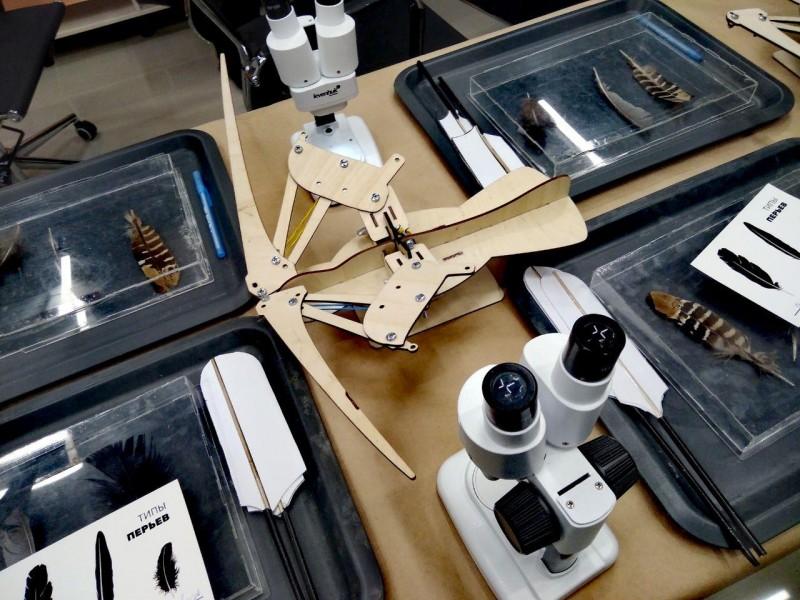 Лаборатория птиц