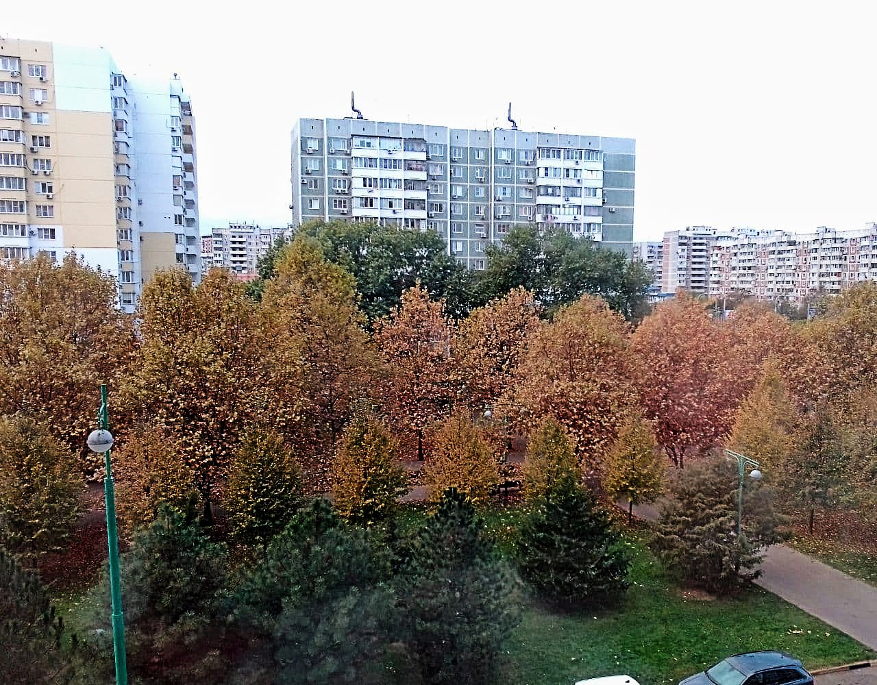 Платановый бульвар в Краснодаре