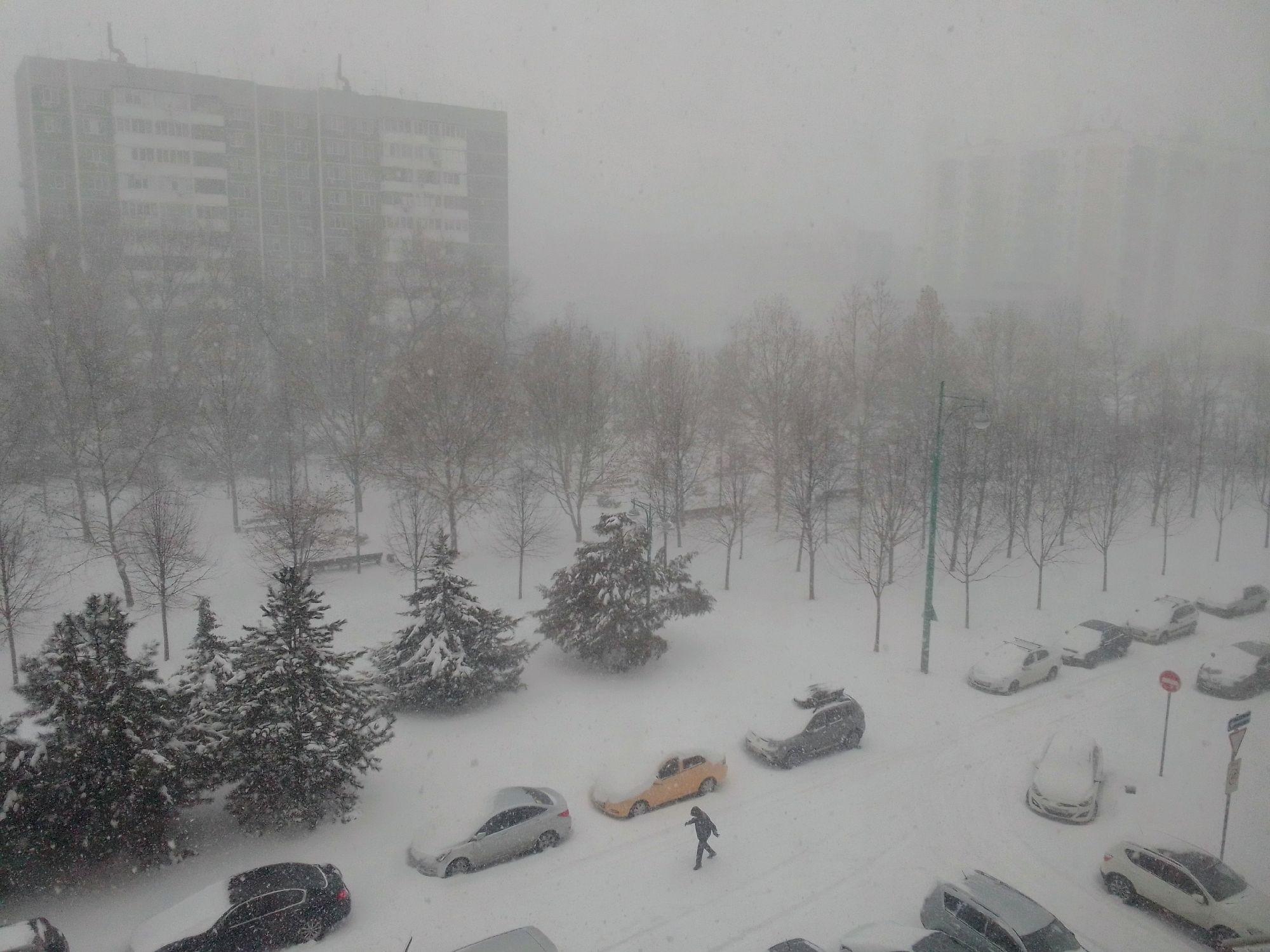 Январь 2021 в Краснодаре