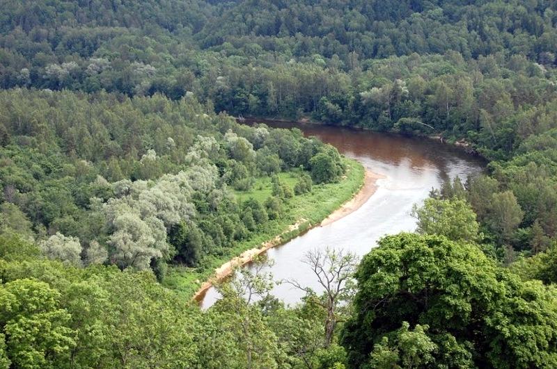 Река Гауя