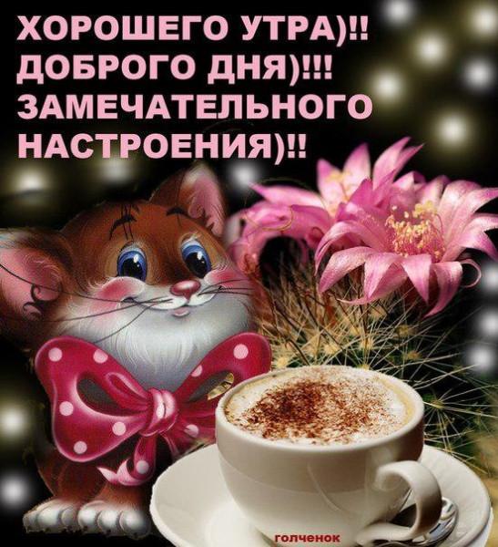 Открытки с пожеланием доброго утра, дня, вечера и спокойной