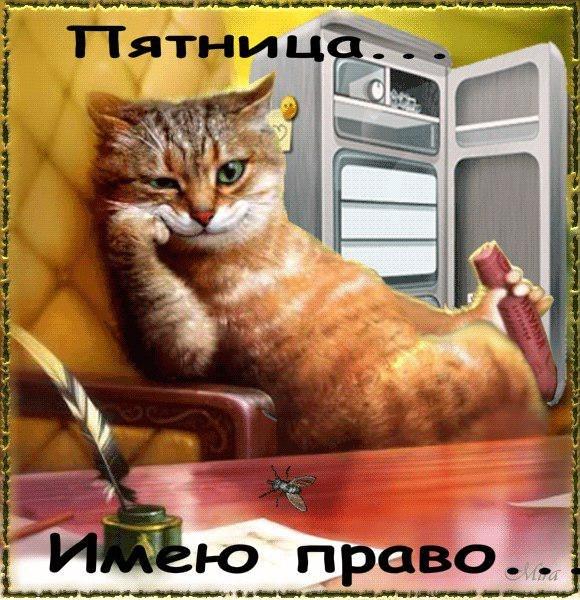 ilyo5xRvVSU