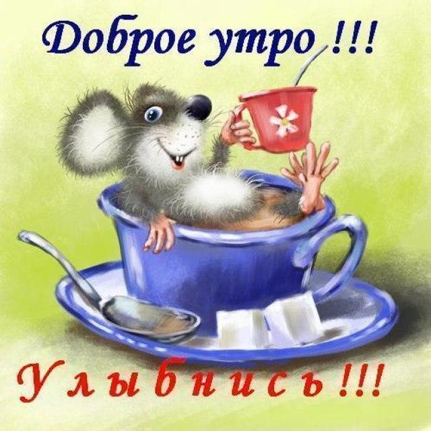 uLOHyiozNy0