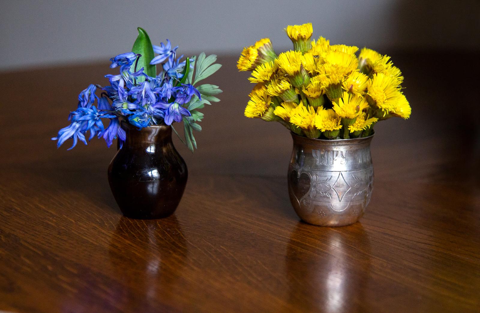 весенние первоцветы вазе фото картинки именно этой