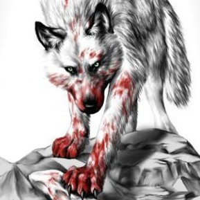 волк в крови