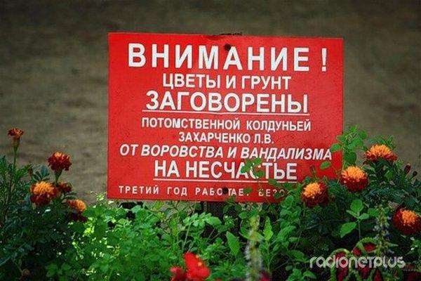 1349408270_marazmiki-7