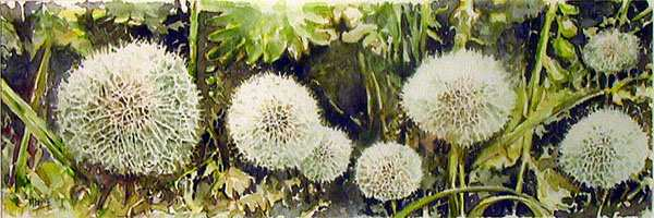 Flowersfruits4