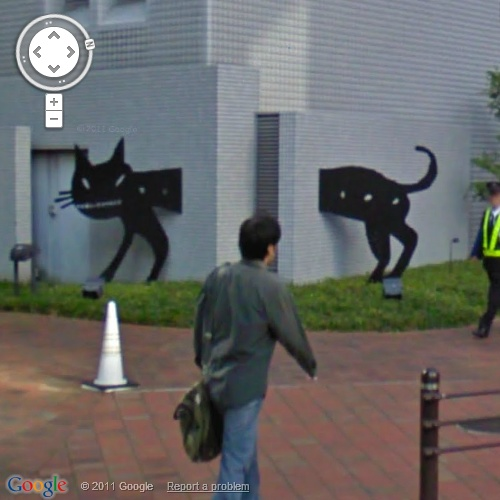 cat-who-walks-throught-the-wall-osaka-500px-gesv